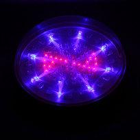 Светильник светодиодный ″Звезда″ RB (красный, синий) купить оптом и в розницу