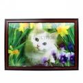 Картина голограмма 40*60см ″Кот в цветах″ купить оптом и в розницу