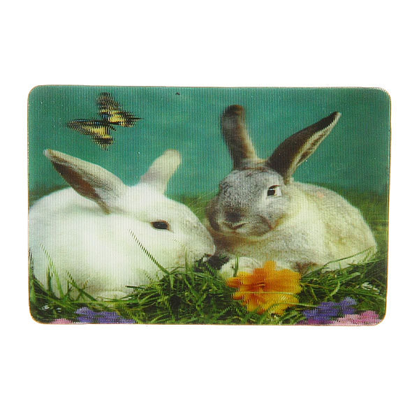 Магнит голограмма ″Два кролика″ 50х75мм купить оптом и в розницу