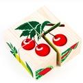 Дер. Кубики 4шт Фрукты-ягоды 3333-2 купить оптом и в розницу