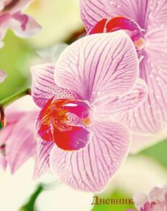 """Дневник д/старш.кл.тв.обл.КТС, """"Розовая орхидея"""", ламинация купить оптом и в розницу"""