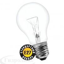 Лампа накаливания Б 75 Вт Е27 Томск (верс.) (144) купить оптом и в розницу