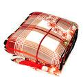 Плед 200*230см Роскошь микрофлис в сумке купить оптом и в розницу