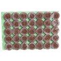 Таблетки торфяные 24 мм (упаковка 35 штук) купить оптом и в розницу