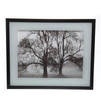 Картина стекло 40*50см ″Деревья″ МС2104 купить оптом и в розницу