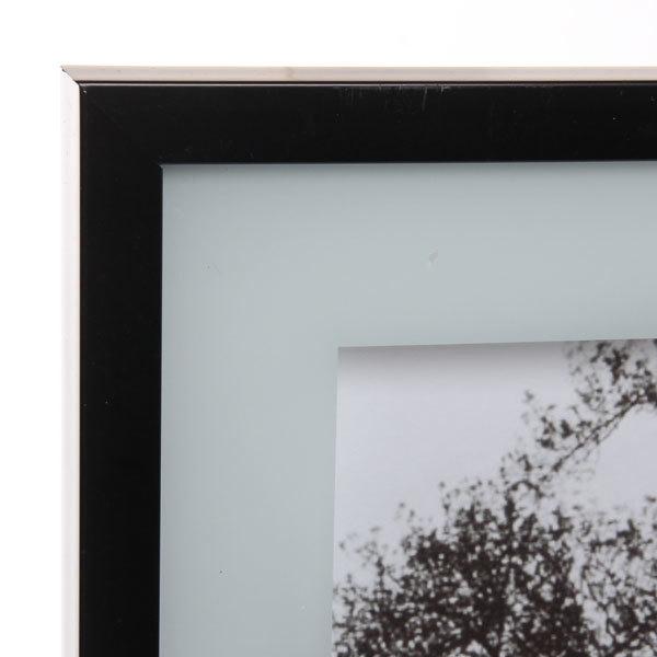 Картина стекло 40*50см ″Деревья в тумане″ купить оптом и в розницу