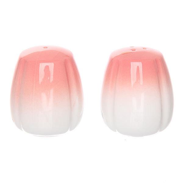 Набор для специй 2 шт ″Радуга″ розовый купить оптом и в розницу