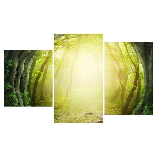 Картина модульная триптих 55*96 см, дорога в лесу купить оптом и в розницу