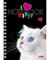 """Книжка записная А6, 80л, клетка, гребень, тв.обложка двойная, HATBER, """"I love kitty"""" купить оптом и в розницу"""