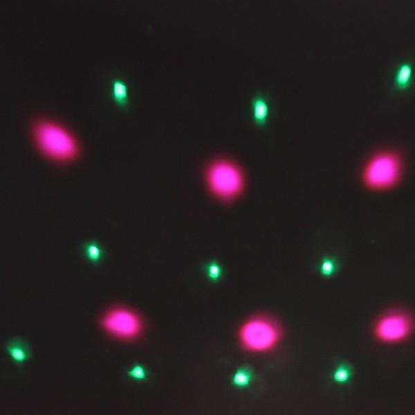 Светодиодный диско шар ″Купол-круг″, RGB(красный, зеленый, синий),DMX, mic, auto купить оптом и в розницу