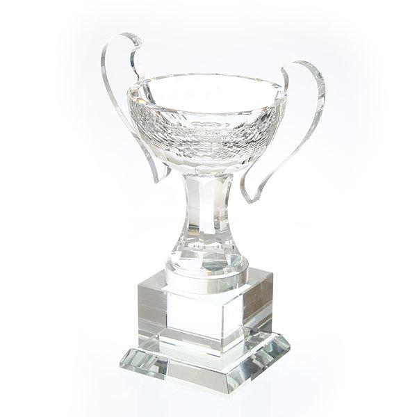 Кубок из стекла 2Y-010C (20см) купить оптом и в розницу