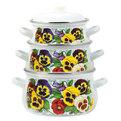 Набор посуды эмалированной 3 предмета ″Фиалки″ (2л, 3л, 4,5л) С-129АП2/4 купить оптом и в розницу