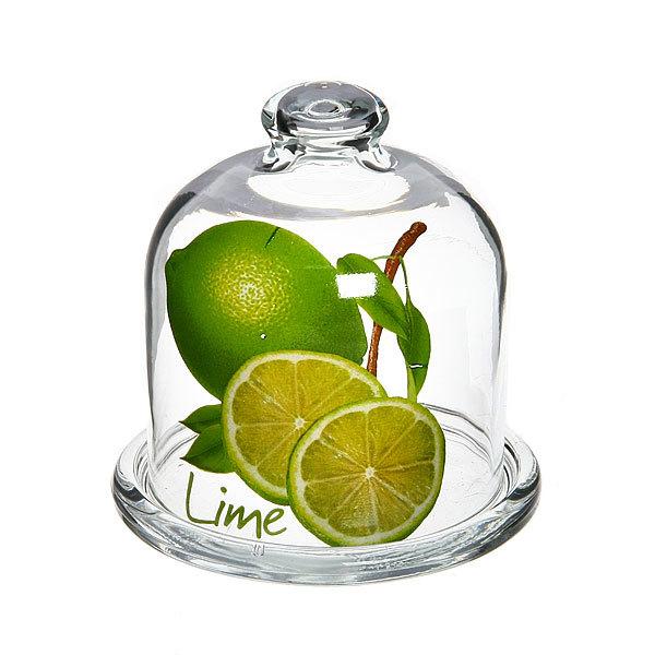 Лимонница ″Лайм″ купить оптом и в розницу