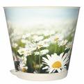 Горшок для цветов Крит D 200 mm с системой прикорневого полива 3,6 л Ромашки *12 купить оптом и в розницу