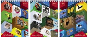 """Блокнот А6 60л.кл.гребень,пластик.обл.HATBER, """"Animal""""s mosaic"""" купить оптом и в розницу"""