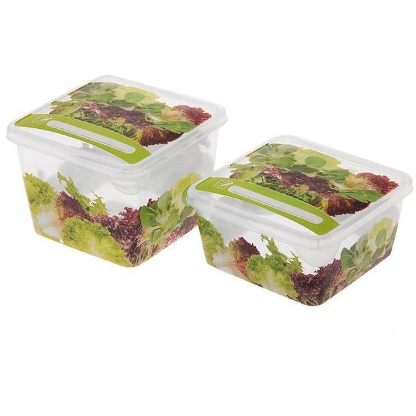 Комплект емкостей для продуктов Браво Овощи квадратных 0,45 л + 0,75 л *36 купить оптом и в розницу