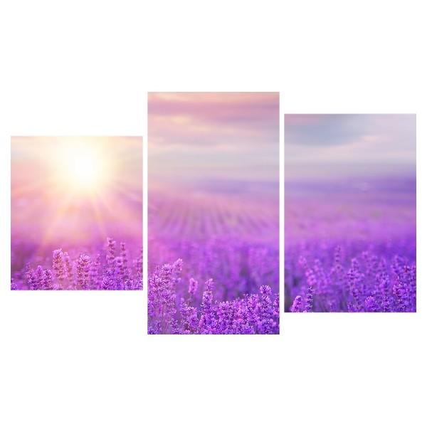 Картина модульная триптих 55*96 Природа диз.30 90-01 купить оптом и в розницу