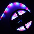 Лента светодиодная 5м*10мм, 60 ламп LED на 1м, теплый белый,самоклейка купить оптом и в розницу