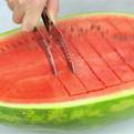 Нож-щипцы для арбуза 25,5см 115 купить оптом и в розницу