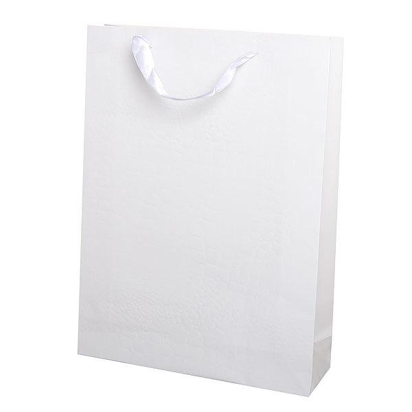 Пакет подарочный ″Элегантный″ 40*30*6 4003Е белый купить оптом и в розницу
