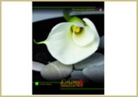 """Дневник д/старш.кл.тв.обл.АЛЬТ, """"Цветы и камни"""", ламинация купить оптом и в розницу"""