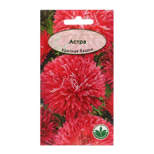 Семена Астра пионовидная Красная башня 0,3гр 20107578 купить оптом и в розницу