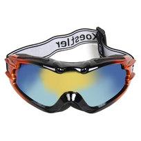 Очки горнолыжные 881 купить оптом и в розницу