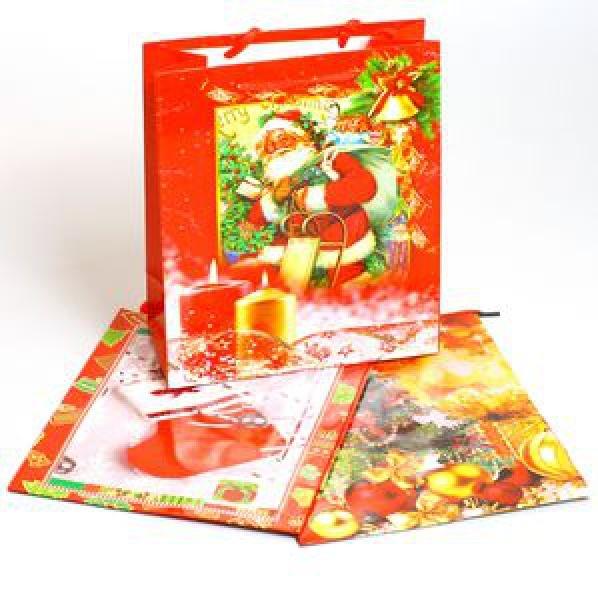 Пакет подарочный 21/18/8см (12/960) купить оптом и в розницу