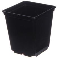 Горшок для рассады квадратный черный 0,25л 7*7*8 см купить оптом и в розницу