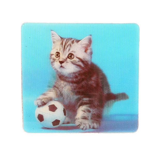 Магнит голограмма ″Кот с мячиком″ 60х60мм купить оптом и в розницу