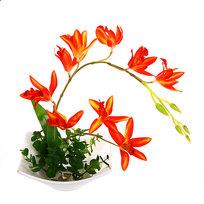 Цветы искусственные в тарелке ″Орхидея″ 30 см YX11053 купить оптом и в розницу