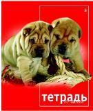 """Тетрадь 80л.кл.гребень АЛЬТ, """"Кошки. Собаки"""" купить оптом и в розницу"""