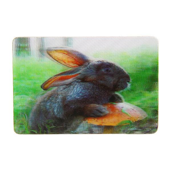 Магнит голограмма ″Черный кролик″ 50х75мм купить оптом и в розницу
