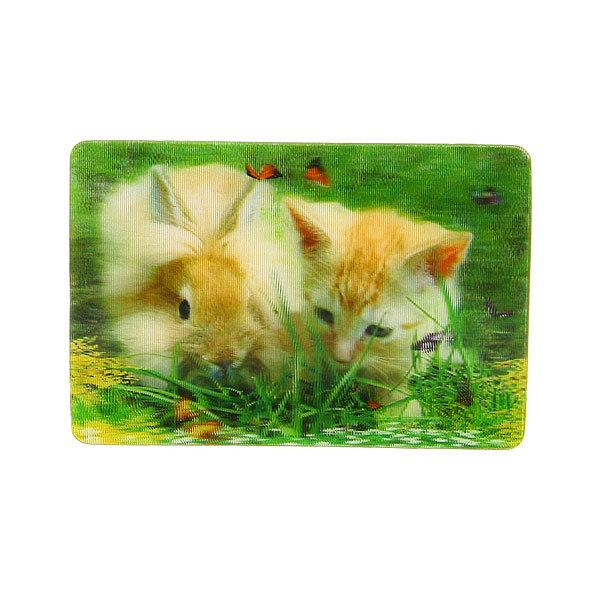 Магнит голограмма ″Кот и кролик″ 50х75мм LD-006 купить оптом и в розницу