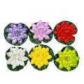 Растение водоплавающее ″Лотос″ d-18см 851A купить оптом и в розницу