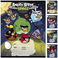 """Тетрадь 12л.лин.скрепка HATBER, """"Angry Birds"""" купить оптом и в розницу"""
