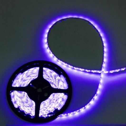 Лента светодиодная 5м*10мм, 60 ламп LED на 1м, синяя,самоклейка,12В, степень защиты IP54 купить оптом и в розницу